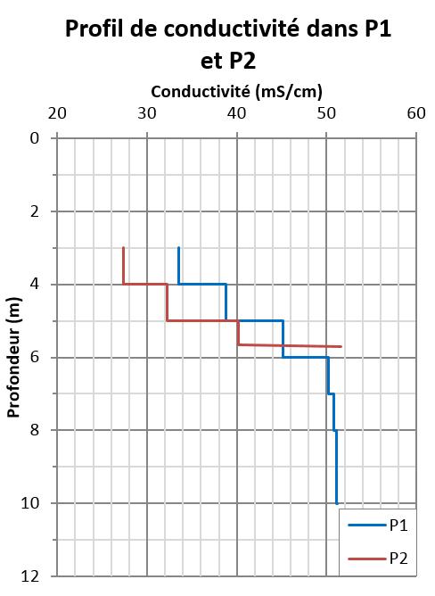 etude-hydrogeologique-infiltration-eaux-usees-traitees-station-epuration-centre-heliomarin-Pen-Bron-05-conductivite
