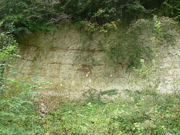 Article - Calligée - Affleurement - craie - captage - Source - Offranville- revue Géologues - alimentation eau potable