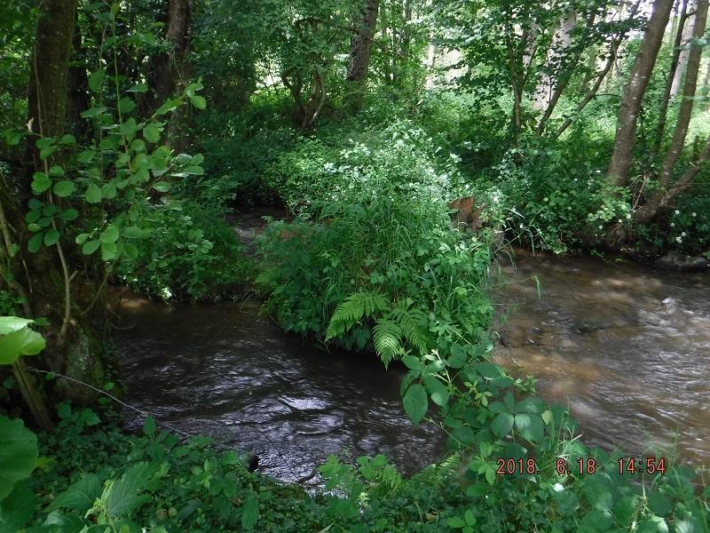 Saint-Pierre-sur-Orthe-ruisseau_recherche_d_eau_00
